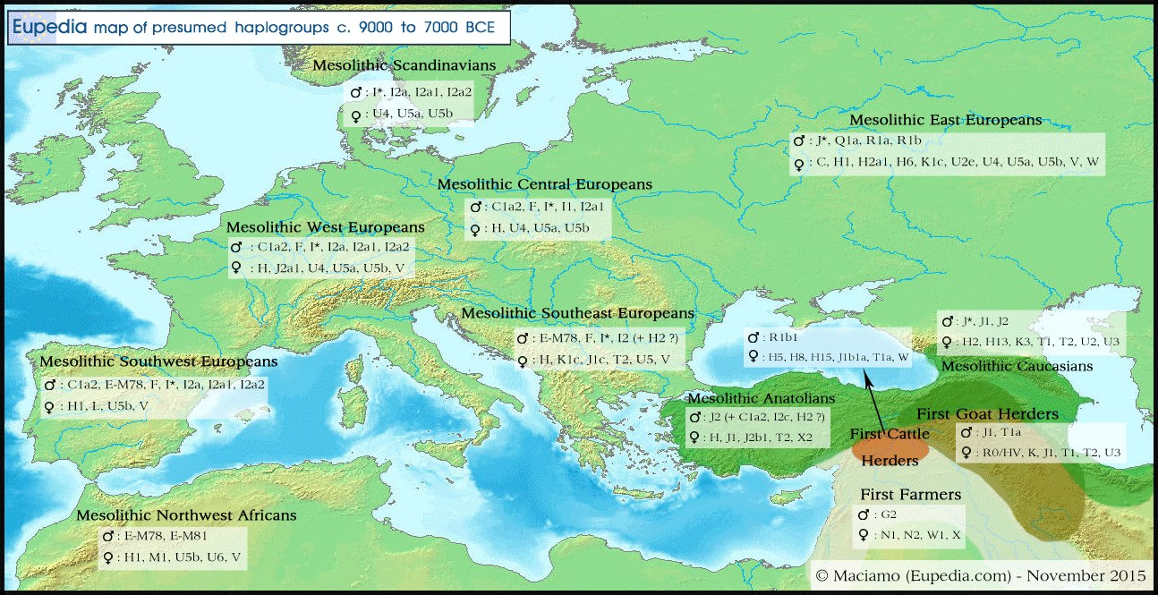 Distribution_haplogroups_in_Eurasia_around_8000_BCE