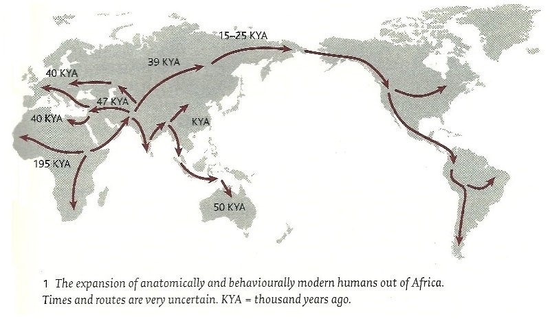 modern human expansion Genomic evidence for an african expansion of anatomically modern humans by a anatomically modern humans emerged in africa in the course of this expansion.