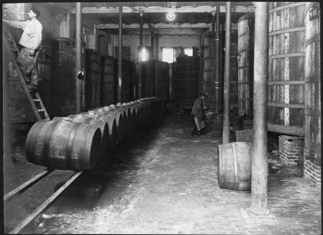 Brouwkelder met bierketels