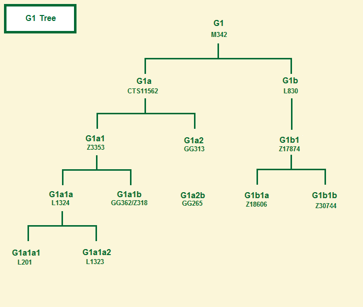 Haplogroup G2a1 tree