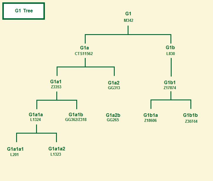 Haplogroup G2a1 tree