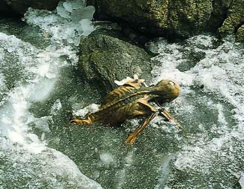 De mummy Ötzi in the glacier of the Ötzenthal